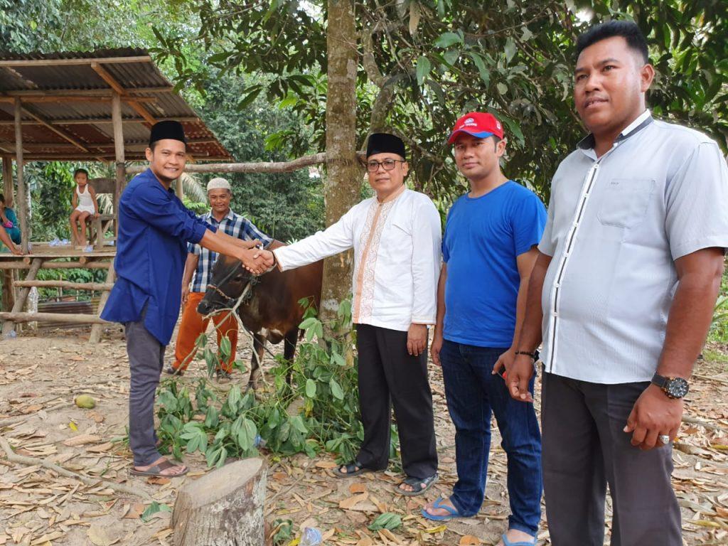 PT.Musim Mas Salurkan Hewan Qurban Ke 7 Desa Dan 2 Kelurahan